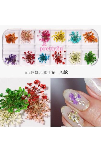 Nail Art Dried Flower Decoration Set Natural Nail Accessories True Dry Flower Petal Flower 美甲饰品 日系花瓣干花